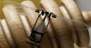 روبوتات نانوية قد تحل محل الحشرات