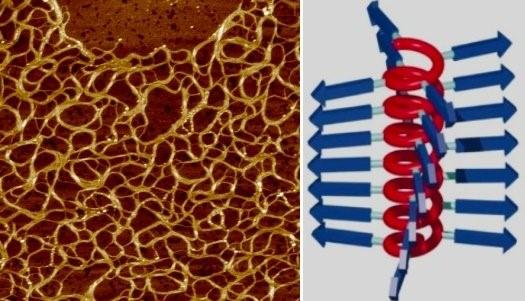 كيلوغرام واحد من مادة بوليميرية يمكنها تحويل مسبح إلى هلام